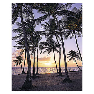 Komar Stefan Hefele Edition 1 Fototapete Palmtrees on Beach (2-tlg., 200 x 250 cm, Vlies)