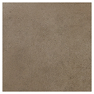 Art-Tec by Palazzo Feinsteinzeugfliese (60 x 60 cm, Taupe, Lapato)