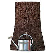 REGENSP. LITTLE TREE250 l BRAUN         3P