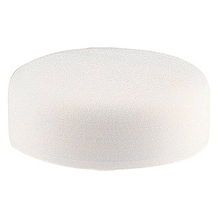 Yachtcare Polishing Pad Foam (Ø x H: 150 x 50 mm, Schaumstoff)
