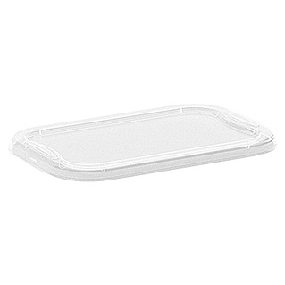Regalux Deksel voor Clear Box Mini (l x b: 17,5 x 11,5 cm, Passend bij: Regalux Clear Box Mini)
