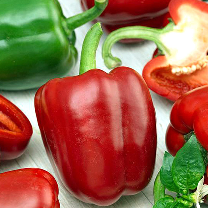 Paprika  (Farbe Frucht: Rot)
