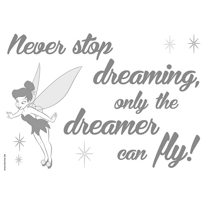 DECOSTICKER DISNEY  NEVER STOP DREAMING